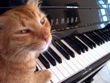 Pianoforte Jazz Blues : Spartiti Improvvisazione Esercizi