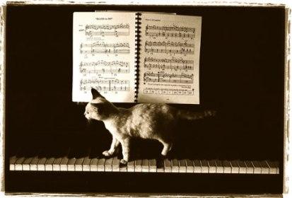 Pianoforte : esercizi di tecnica